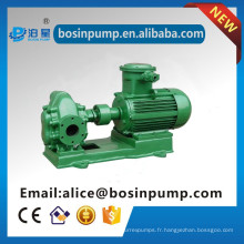 Structure standard Pompe à engrenages pompes à huile moteur diesel