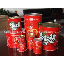 800g 14% -16% Pasta de tomate em conserva