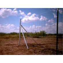 Galvanis Farm Guard Metal Wire Mesh Diajukan Pagar
