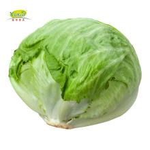 Good Product Green Fresh Brands Lettuce