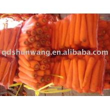 Красный Морковь