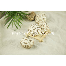 Dried Food White Flower Mushroom