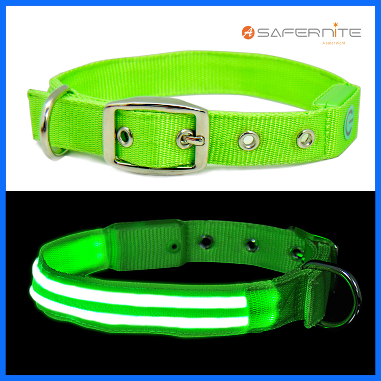 Malam Fluorescent Lighted Dog Collar And Leash