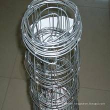 Hot Dipped Galvanized Page Wire Fence
