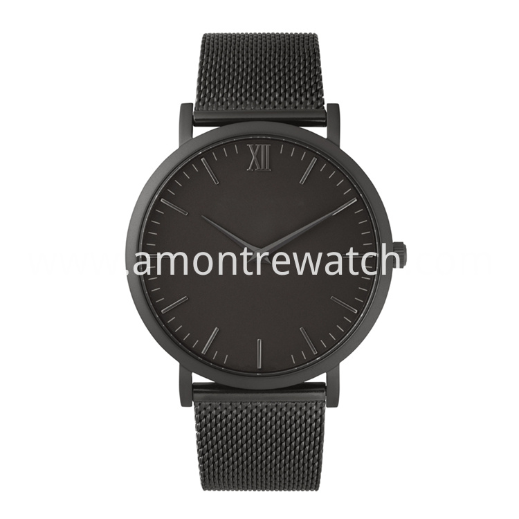 black stainless steel mesh watch