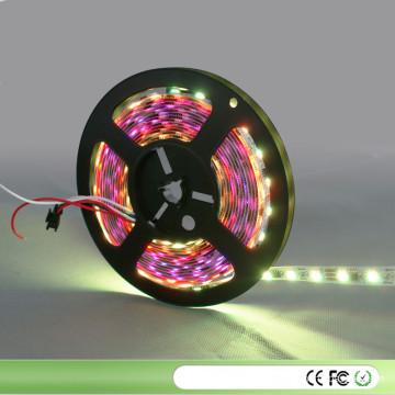 Natal 5V 12V 5050 LED RGB para Ws2801 Ws2811 Ws2812 B Fita LED