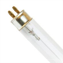 Stellen Sie direkt die keimtötende Glühlampe der besten Qualität zur Verfügung