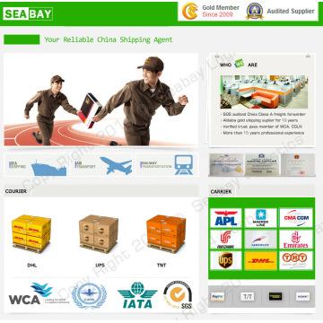 Billiger Express / Kurierdienst aus China (DHL, TNT, UPS)