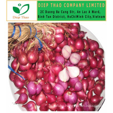 FRESH RED ONION/WHOLESALE FRESH ONION/ RED ONION EXPORT IN VIETNAM