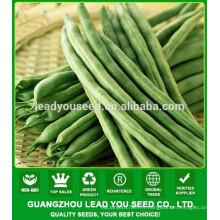 NBE08 Zoulu graines de légumes pour la culture, graines de haricots, graines de pois