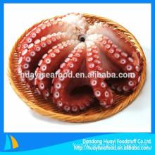 wholesale super quality low price frozen octopus