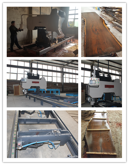 Electric diesel power Horizontal Sawmill Machine
