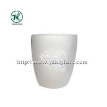 Gelo garrafa de vidro de parede dupla (8.5 * 5.5 * 10.5 285ml)