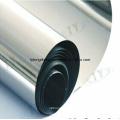 Vacuum Furnace Molybdenum Sheet/Plate/Strip 99.95% Moly Sheet
