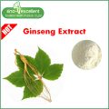 100% Pure Panax Ginseng Extract