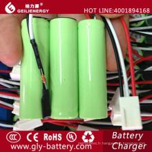 Les batteries rechargeables d'usine de Geilienergy emballent aa ni-mh 1800mah 3.6v