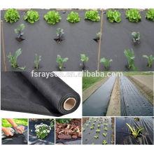 Protección vegetal al por mayor Entrega rápida Garden Row Covers