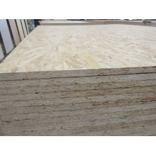 Construction OSB Board for 15mm Price