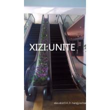 Escalator Comercial