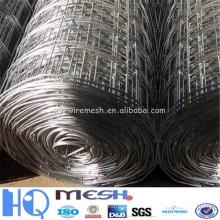 Nouveaux produits treillis métallique soudé galvanisé de 1/4 pouce (fournisseur de guangzhou)