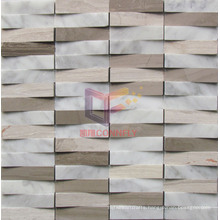 Natural Stone Mosaic Tile (CFS884)
