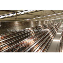 china new design galvanizing best quality types of layer chicken cages for zimbabwe poultry farms