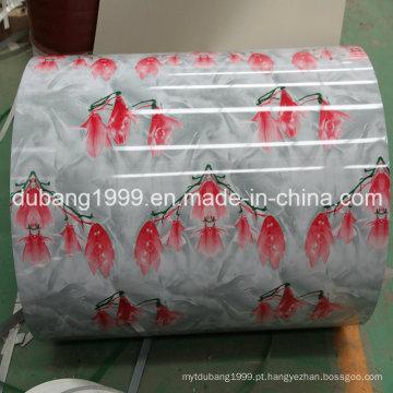 PPGI com exportação de alta qualidade para Hong Kong