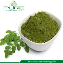 100% natürliches Moringa-Blatt-Pulver GMO-frei