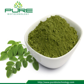 100% Natural Moringa Leaf Powder GMO-Free