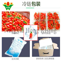Fresh NingxIa goji berry organik wolfberries