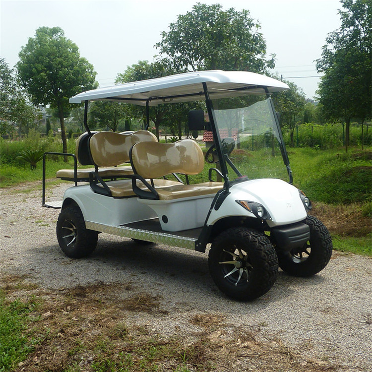Fancy Golf Carts