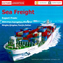 Carga agente/envío de la carga y el flete marítimo desde China a todo el mundo
