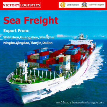 Freight Agent/Shipping Freight/Sea Freight/ From China to Worldwide