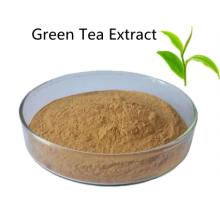 Купить активные ингредиенты в порошке экстракта зеленого чая
