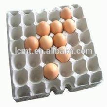 bandejas de huevo de pollo de alta calidad para la venta