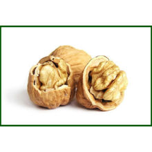 Bulk Cheap Natural Walnut