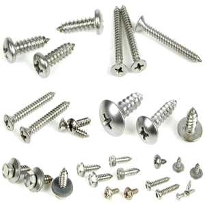 Stainless Steel Self Tapping Screw