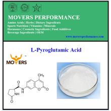 Ácido L-Pyroglutamic caliente de la venta con el mejor precio