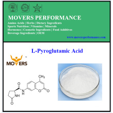 Hot Sell L-Pyroglutamic Acid with Best Price