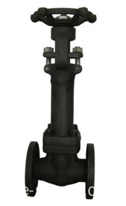 A105 Bellows Sealed Globe valve
