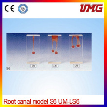 Root Dental Canal Model for Simple Root