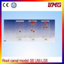 Root Dental Canal modelo de raiz simples