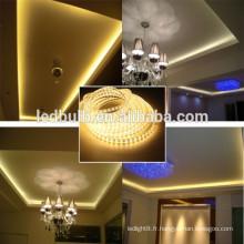 RVB lampe LED décoratif nouvelle usine OEM bienvenue led strip light
