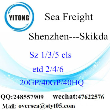 Shenzhen Port Sea Freight Shipping Para Skikda