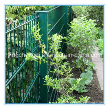 PVC Coated Garden Fence/Double Wire Mesh/Wire Mesh Fence (manufacturer)