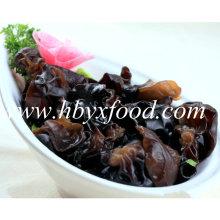 2-2.5cm Top Quality Dry White Back Fungus