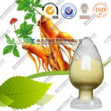 Extracto de Ginseng asiático en polvo Extracto de Ginseng mejor