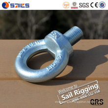 Forged Eye Bolt/Threaded Eye Bolt for Lifting