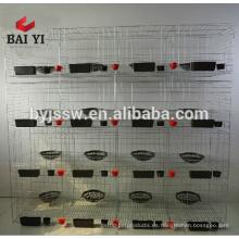 Jaula de paloma blanca y gris jaula de paloma barata para la venta (hecho en China, buena calidad)
