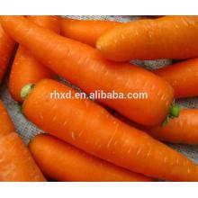 новый свежий морковный с различными размерами и пакеты